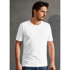 PD 3081 Meeste Slim Fit-T